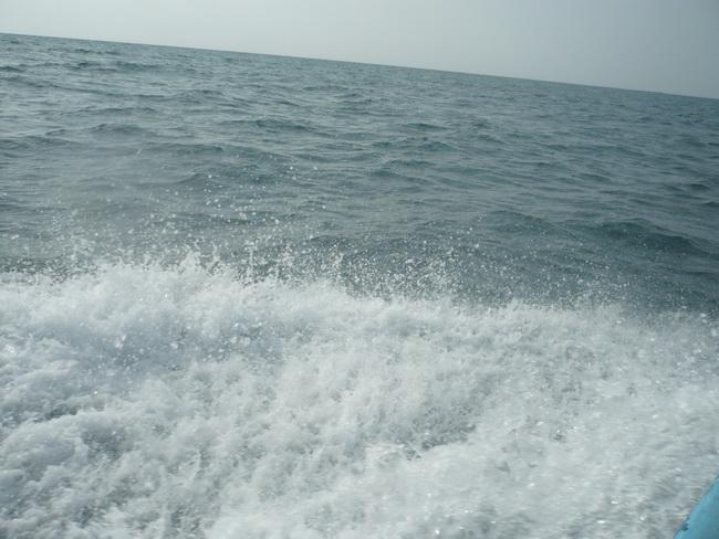 رحلة بحرية لأعضاء المنتدى(صور) 2p675850.jpg