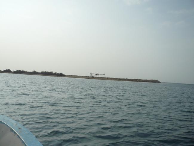 رحلة بحرية لأعضاء المنتدى(صور) MEZ76037.jpg