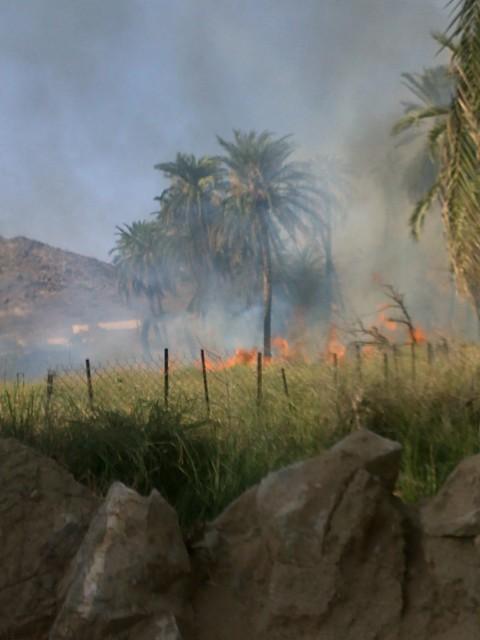 (قنونا) حريق وادي قنونا N3O35223.jpg