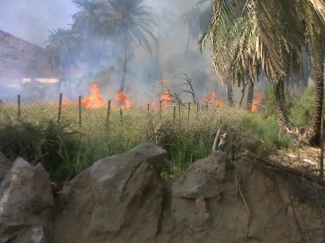 (قنونا) حريق وادي قنونا dbS35223.jpg