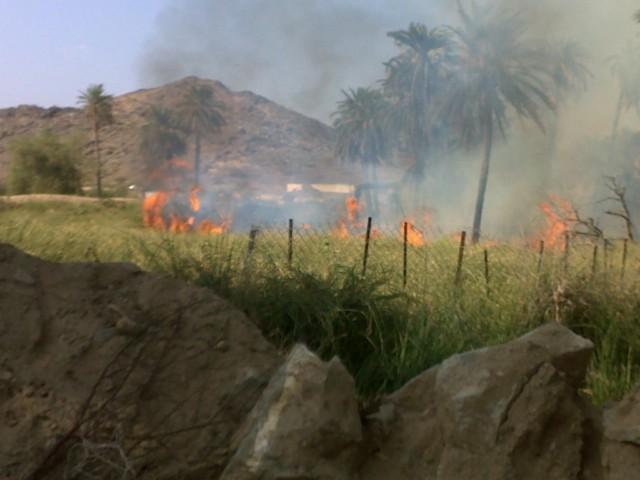 (قنونا) حريق وادي قنونا kPA35223.jpg